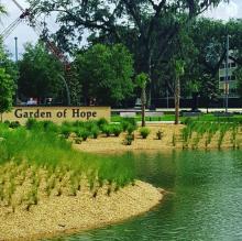 Photo Garden of Hope