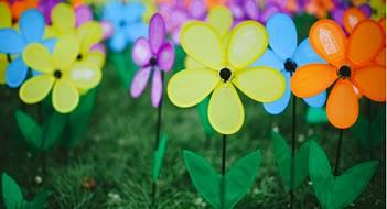 flowers for alzheimer's