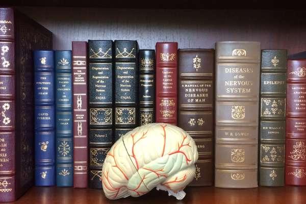 books and brain photo
