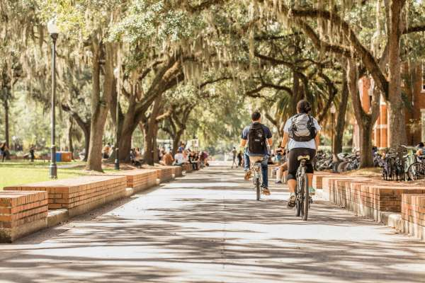 Tree lined street with 2 people on bicycles